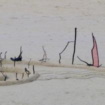 Performance sur le sable avec les bois et dentelles de Patelgé