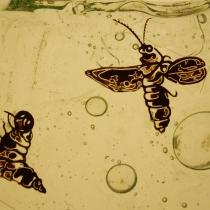 Pauline Le Goïc, Dalle de verre aux lucioles, détail d'une pièce peinte à la grisaille